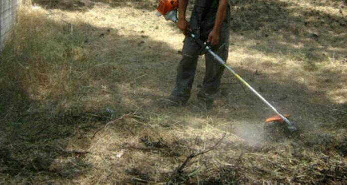 Ο Δήμος Ναυπλιέων καλεί τους ιδιοκτήτες να καθαρίσουν τα οικόπεδά τους
