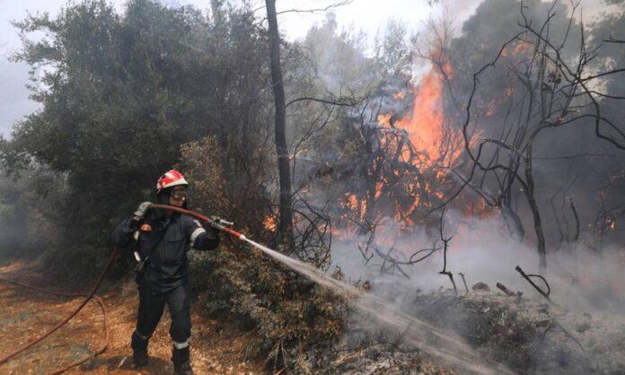 Φωτιά Γεράνεια Όρη: ΤΩΡΑ-Συνεχίζονταιοι αναζωπυρώσεις