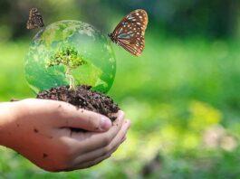 Βιοποικιλότητα
