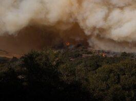 Ναύπλιο: Φωτιά σε δασική έκταση στο Αραχναίο