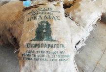 Σε εξέλιξη βρίσκεται η σποροπαραγωγή πατάτας στην Αρκαδία